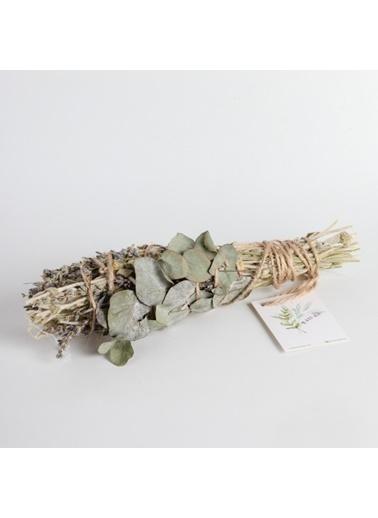 Root Aromaterapi Tütsü Renksiz